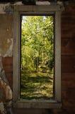 Window of trees Stock Photo