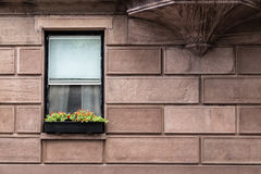 From the Window. Two windows in a brick wall Royalty Free Stock Image