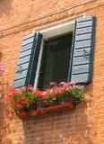 Window in Venezia Stock Photos