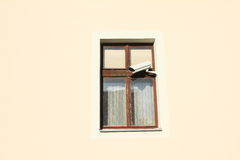 Window with video camera. Brown window with security video camera Stock Photography