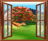 A window with a view of the deer outside Royalty Free Stock Photos