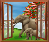 A window with a view of elephants Royalty Free Stock Photography