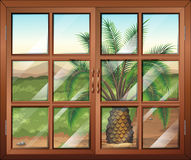 A window with a view of the palm plant outdoor Royalty Free Stock Images