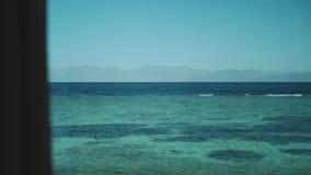 Window view to the sea, waves and palm tree , blue sky, slow motion.Blue sea and blue sky, horizon ,Egypt, Sinai, full