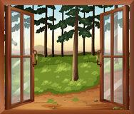 A window with a view of the trees Stock Photography