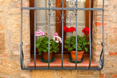 A Window in the Village of Monticchiello. There are many delightful buildings in the village of Monticchiello in Tuscany.  Some of them have lovely details such Royalty Free Stock Photography
