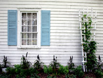A Window and Vines. A window and vegetation positioned using the rule of thirds stock photography