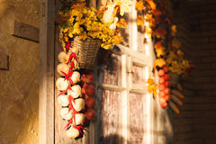 Window with vintage shutters decorated yellow leaves, flowers ba. Sket, garlic strings, corns. Autumn mood in photo studio Stock Images
