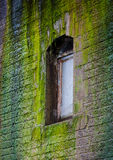 Window in a wall covered with moss Royalty Free Stock Photos