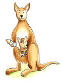 A window in the wall. The kangaroo with her baby Royalty Free Stock Images