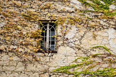 Window in a wall. Window in an old stone wall with virginia creeper on a surface of a wall royalty free stock image