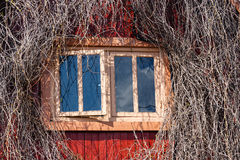 Window in a wall of the wooden house Royalty Free Stock Photos