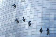 Window washers. Six window washers washing windows Royalty Free Stock Images