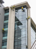 Window washers. Four window washers hanging on ropes to wash the glass facade of a hoteln Stock Images