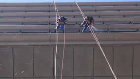 Window washers hanging from suspended tight-ropes in high-rise building using squeegees to clean stock footage