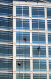 Window Washers. Three window washers descend on ropes high above the city. The building is a very modern glass structure Stock Photos