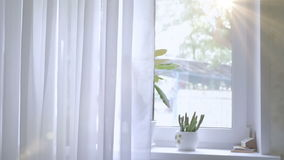 The window is white with curtains. The background stock video