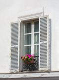 Window on white wall with flowers royalty free stock photos