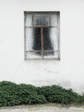 Window on a white wall with grass Stock Images