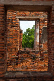 Window in window. Texture of ancient window thailand Royalty Free Stock Photo