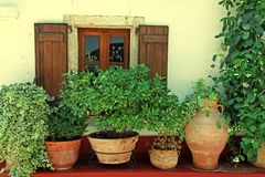 Window with wood shutters and flower pots (Crete, Greece) Stock Image
