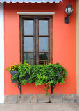 Window with wooden statue and ivy Royalty Free Stock Photos