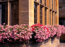 Windowboxes, Broadway, England. Royalty Free Stock Photos