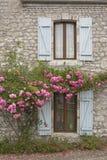 Windows和玫瑰 库存照片