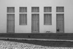 Windows和门在Oeiras, Piaui,巴西 免版税图库摄影
