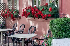 Windows λουλουδιών Στοκ Φωτογραφίες