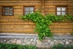 Windows в деревянных рамках на стене Стоковые Фотографии RF