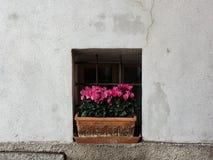 Windows в Тоскане Стоковое Изображение