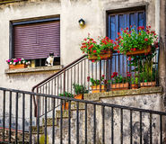 Windows и двери в старом доме украшенном с цветком Стоковое фото RF