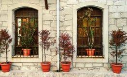 Windows и цветки с каменной стеной Стоковое фото RF