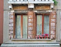 Windows и цветки Стоковая Фотография RF