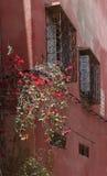 Windows - Марокко Стоковое Изображение