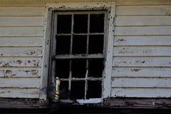 Windows мира Стоковая Фотография