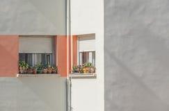 2 Windows на современном угле здания Стоковые Изображения