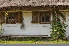 Windows на старом деревянном доме Стоковое Изображение RF