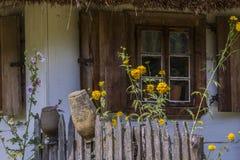 Windows на старом деревянном доме Стоковая Фотография