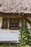 Windows на старом деревянном доме Стоковые Изображения