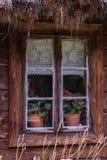 Windows на старом деревянном доме Стоковые Изображения RF