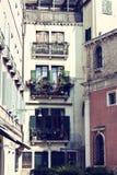 Windows с заводами старого дома в улице в Венеции Стоковые Изображения