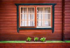 Windows с занавесами и некоторым зеленым цветом цветет на покрашенном деревянном доме Стоковая Фотография RF