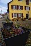 Windows с коричневым цветом закрывает Staufen im Breisgau Schwarzwald Германия стоковая фотография rf