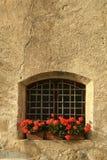 Windows с красными цветками в центре Brixen/Bressanone Больцано Италия Стоковое Фото