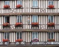 Windows с красными цветками Стоковые Фото