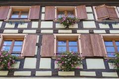Windows с цветками в Эльзасе, Франции Стоковые Фотографии RF