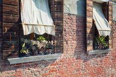Windows с цветками и тентом Стоковое Изображение RF