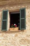 Windows с цветки. Стоковые Фото